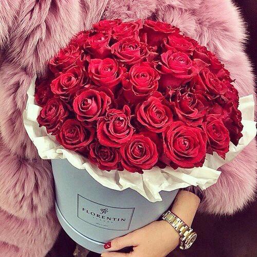 تعرف إلى الأصناف الكثيرة من الورود الموجودة في محلات ومتاجر الدولة الإماراتية